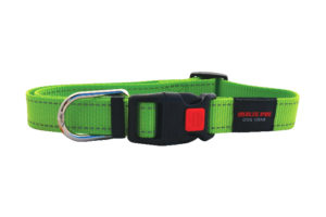Matis Pet collar green