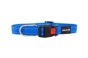 Matis Pet collar blue