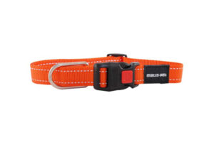 Matis Pet collar orange