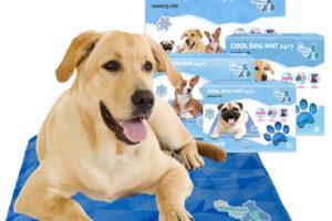 CoolPets-Dog-Mat